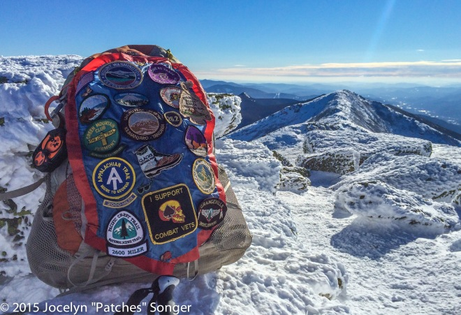 Patches happily visiting the AT on Franconia Ridge near the Summit of Mt. Lafayette.