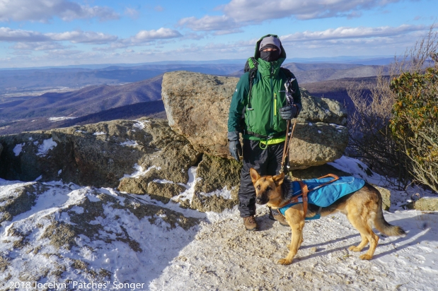 Doggone Cold! Winter Gear List for Dogs